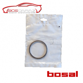 Uszczelka Ford Galaxy Bosal 256-115