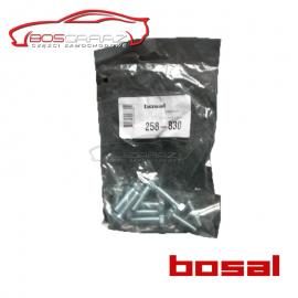 Śruba Bosal 258-830