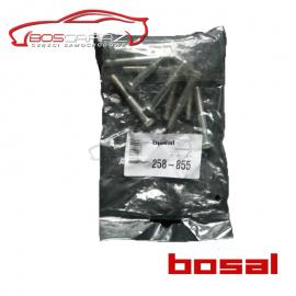 Śruba Bosal 258-855